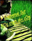 Photo de blog-start