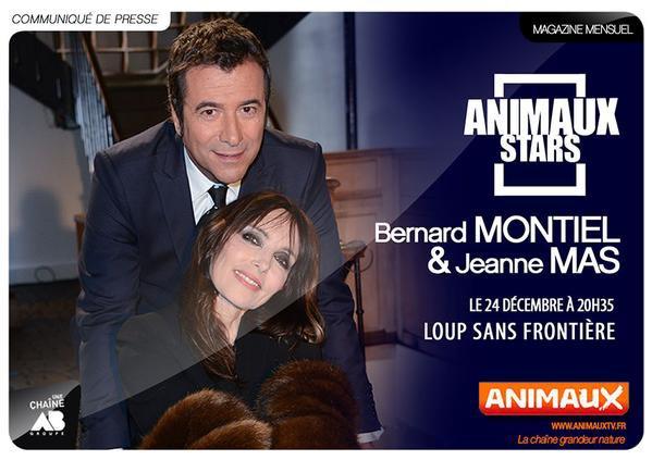 """NEWS TV - JEANNE sur la chaine """"ANIMAUX TV"""" le 24 d�cembre"""