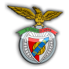 SLBENFICA2009
