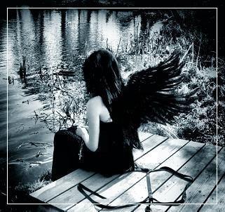 angel146