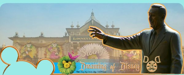 Nouveau Forum Dreaming Of Disney