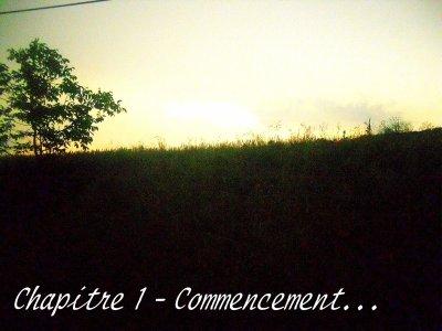 Chapitre 1 - Commencement