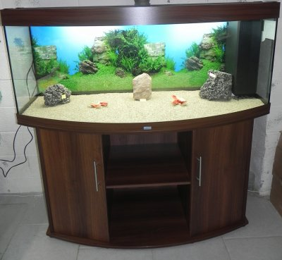 aquarium juwel bomb 450 litres vendu sur commande. Black Bedroom Furniture Sets. Home Design Ideas