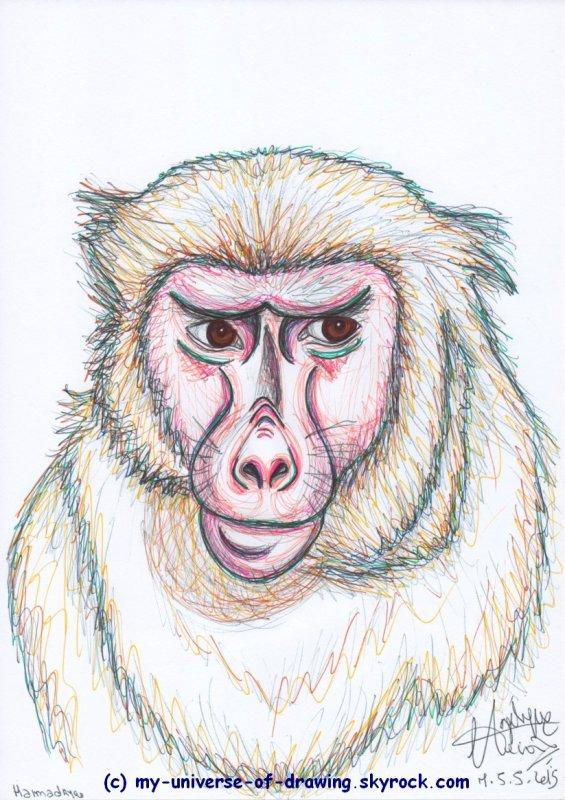 Blog de my universe of drawing parce que l 39 inspiration n for Dujardin dromadaire