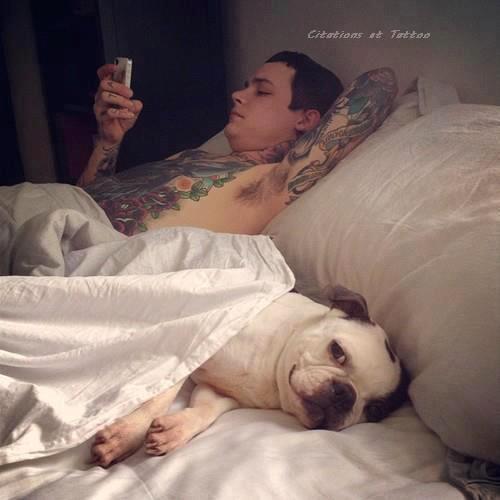 � Le chien est l'animal le plus vigilant ; pourtant, il dort toute la journ�e. � [ Georg Christoph Lichtenberg ]
