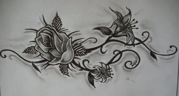 Rose and lys k tacombe tattoo c - Rose dessin tatouage ...