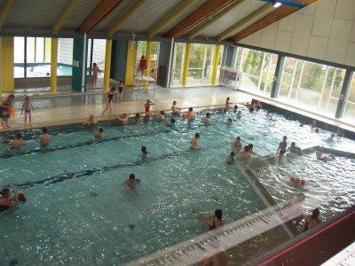 La piscine de mouscron l 39 univers des petits vertus for Piscine dauphin mouscron