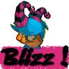 blizz-team