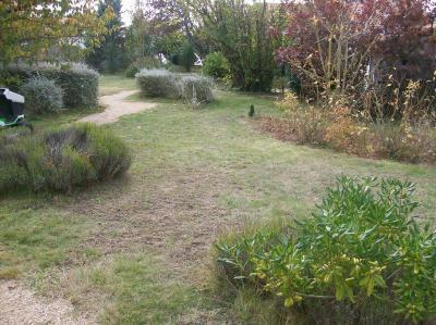 scarification d 39 une pelouse fouras le paradis vert 17. Black Bedroom Furniture Sets. Home Design Ideas