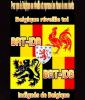 Belgique-reveille-toi