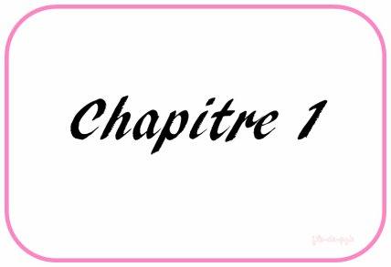 � CHAPITRE 1.