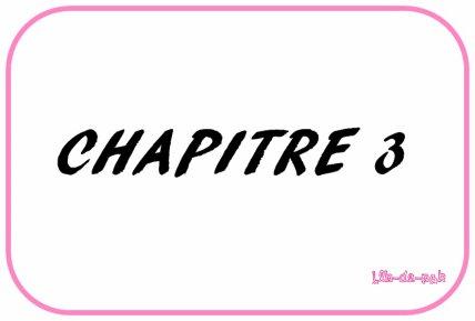 � CHAPITRE 3.