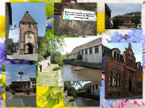 19 juillet- voisins alsaciens, me voil�......