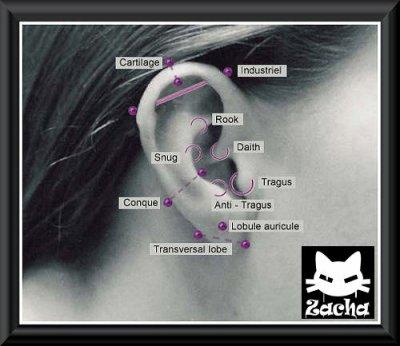 blog de piercings infos toute l 39 info sur les piercings. Black Bedroom Furniture Sets. Home Design Ideas