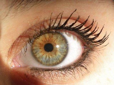 Le regard d une personne blog de josy64 - Yeux vert marron ...