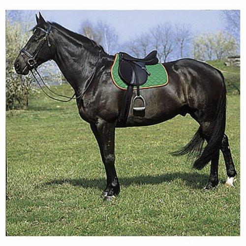 la selle le galop d 39 un cheval est la libert de l 39 me. Black Bedroom Furniture Sets. Home Design Ideas
