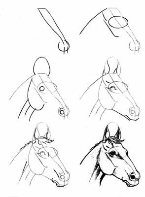comment dessiner 1 cheval
