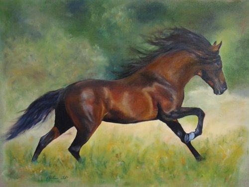 Cheval au galop blog de cheval682 - Comment dessiner un cheval au galop ...