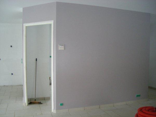 Peinture du salon s jour gris mauve blanc blog de emmamat40120 for Peinture salon blanc et gris