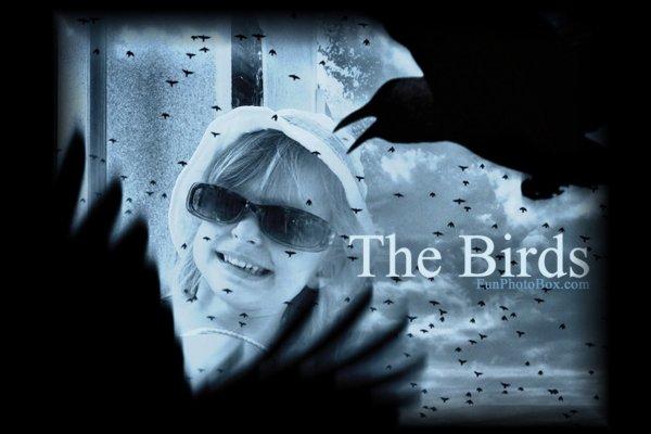 Le b�b� Corbeau,