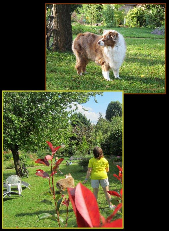 Le � Bon'Eure � dans le jardin…