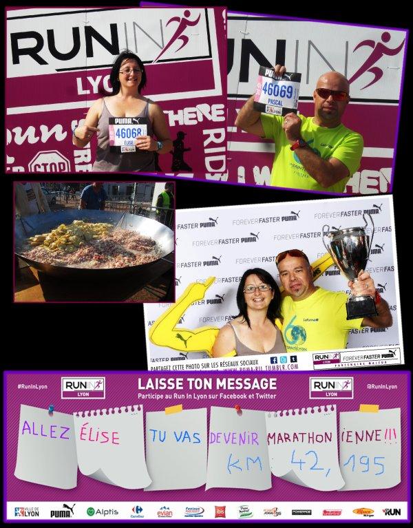 Marathon : Run in Lyon 2014