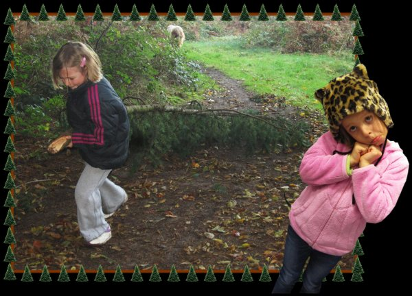 Balade en for�t � la poursuite des champignons !