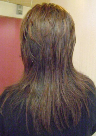 coupe brushing sur cheveux long vue de derri re blog de