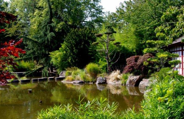 Une petite vue du jardin japonais sur l 39 ile de versailles nantes art floral bouquets et for Jardin japonais nantes