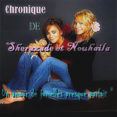 Chronique de Sherazade & Nouhaila ; Un amour de Jumelles presque Parfait