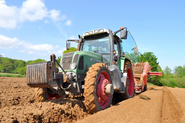 Tamisage avant plantation de pomme de terre anto29260 - Periode plantation pomme de terre ...