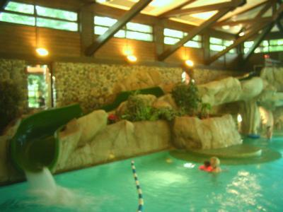 Sequoia lodge ana s life in denmark for Piscine sequoia lodge