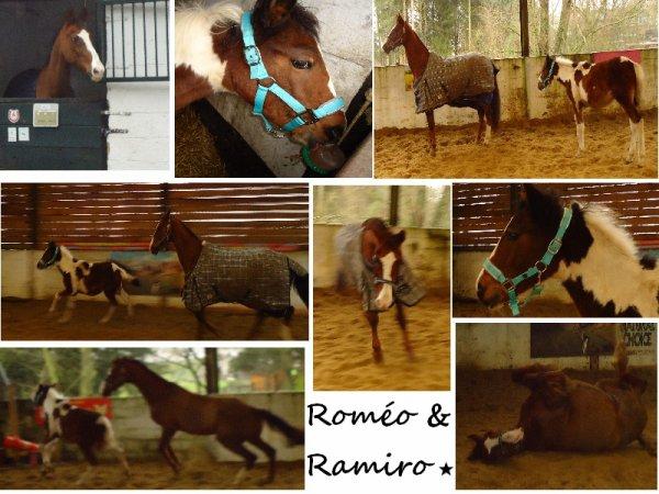 Rom�o & Ramiro.. <<