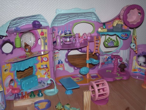 mon centre sportif x littlest petshop 77400 x. Black Bedroom Furniture Sets. Home Design Ideas