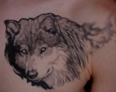 tatoo tete de loup tatouages tatoo le plus gros skyblog de. Black Bedroom Furniture Sets. Home Design Ideas
