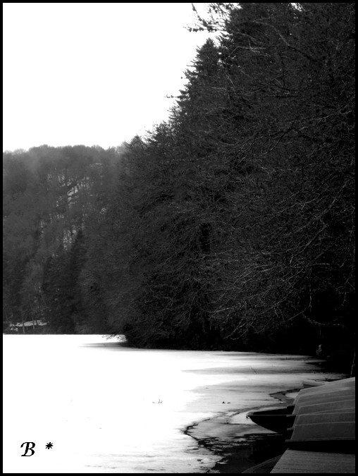 Le Lac Pavin - Auvergne. 28 Mars 2o13