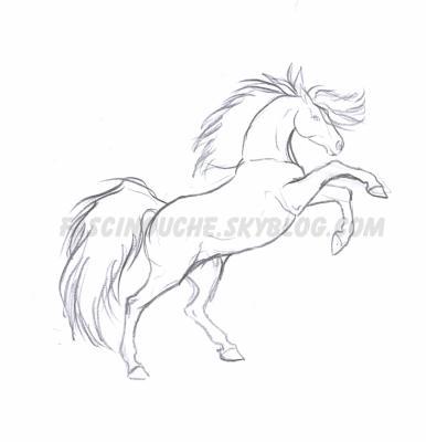 Cabr fougueux deux passions r unies le dessin les chevaux - Cheval facile a dessiner ...