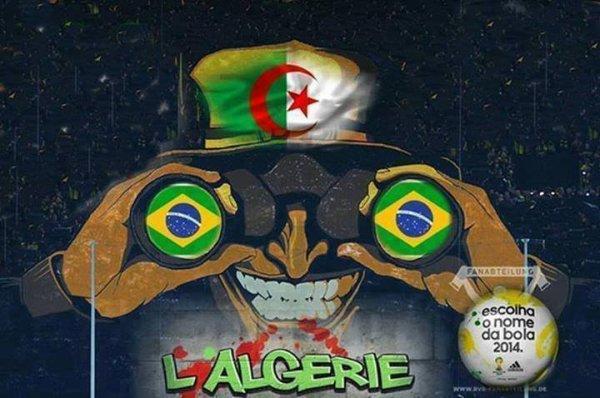 1.2.3viva l'algérie 3196084689_1_2_aOwFD