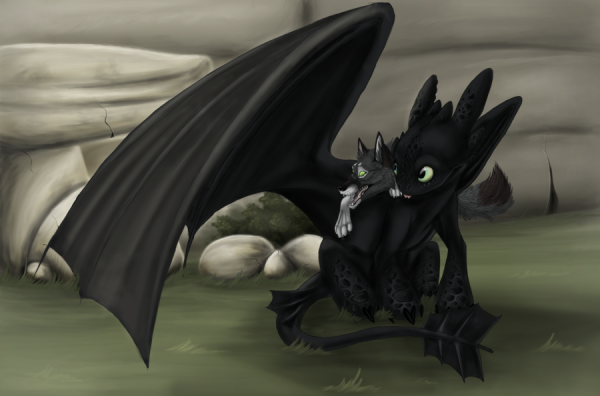 How To Train Your Dragon 2 Hiccup And Toothless Poster Croc et un pti loup ^^...
