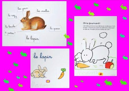 Articles de lipange tagg s coloriage page 3 les oeuvres de manon - 4 images 1 mot poussin lapin ...