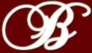 beyonce-tour-2007