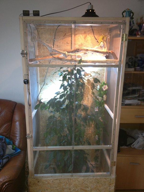 Terrarium fabriquer par mes soins en bois osd pour mon cam l on dimension du - Fabriquer son terrarium ...