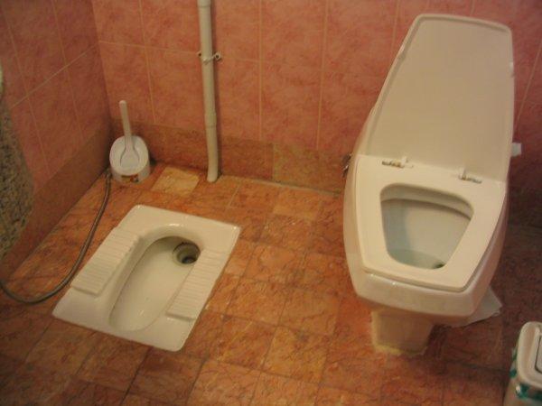 Delire dans les toilettes de l avion 10