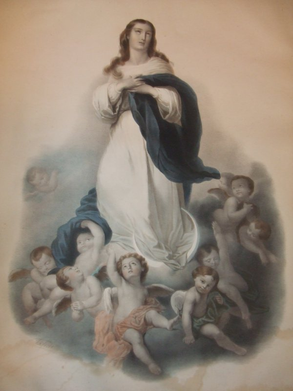 L'immacul�e conception ... besoin de renseignements svp