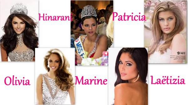 �lection de Miss �t� 2014