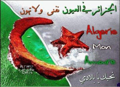 l'algérie 2738744686_1_15.jpg