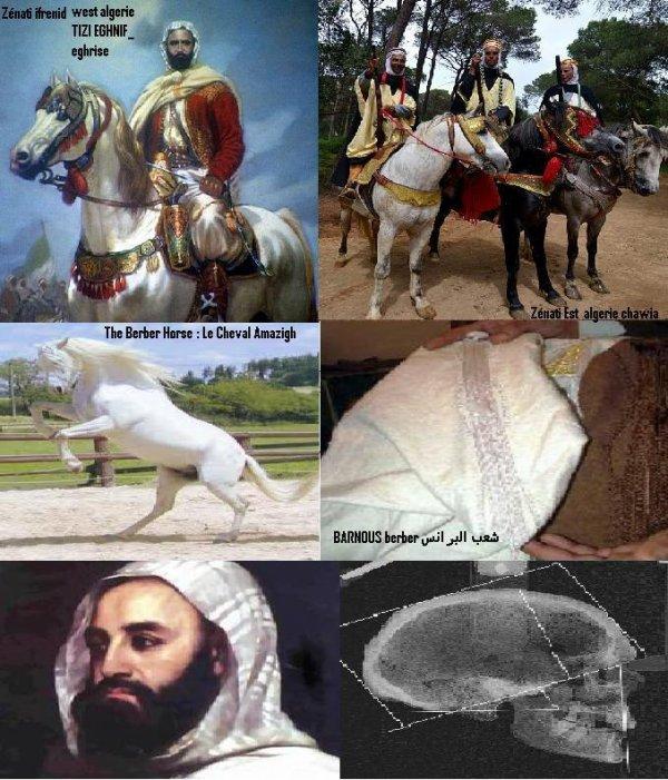 nous somme pas des arabes                                                                                  نحن أمازبغ ولسنا عرب