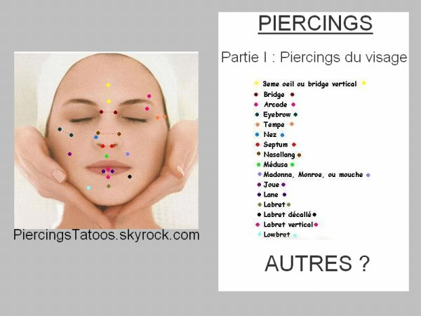 blog de piercingstatoos piercings tatouages. Black Bedroom Furniture Sets. Home Design Ideas
