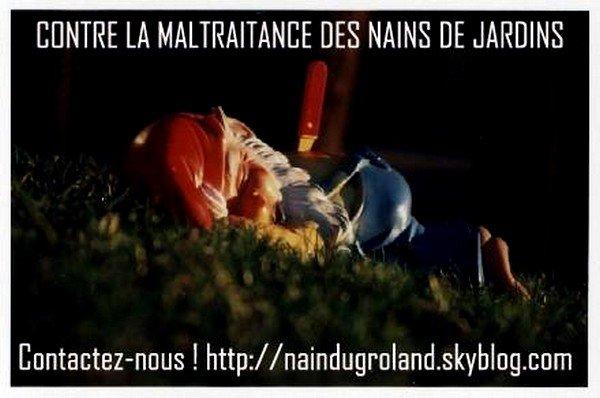 En premi re page pour la lib ration des nains de jardins - Front de liberation des nains de jardins ...