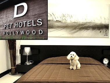un h tel de luxe pour chiens s 39 ouvre new york slash home. Black Bedroom Furniture Sets. Home Design Ideas
